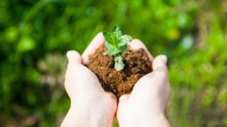 Umweltmanagementsystem nach DIN EN ISO 14001